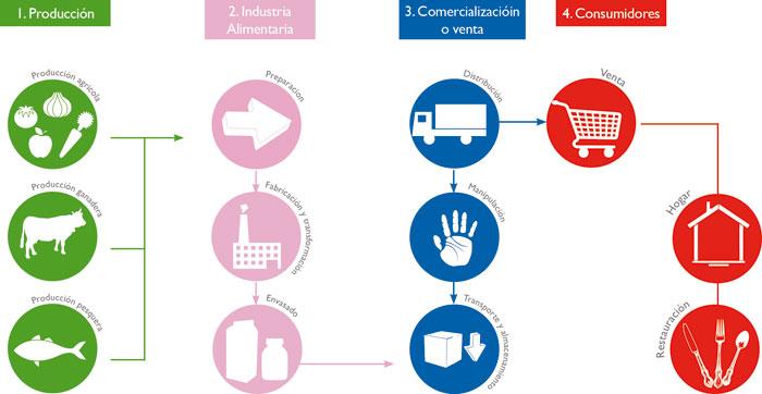 Seguridad alimentaria y calidad nutricional, ¿qué papel juega el  consumidor? | Observatorio de alimentación